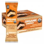 Skout Backcountry Argentinian Peanut Butter Organic Energy Bar
