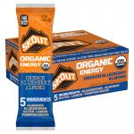 Skout Backcountry Oregon Blueberry Almond Organic Energy Bar